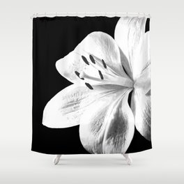 White Lily Black Background Shower Curtain