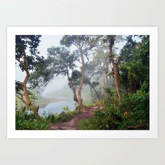 Jungle in Royal Chitwan National Park, Nepal. Art Print