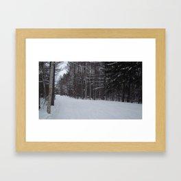 Snowy Path 2 Framed Art Print