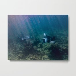 Mantas ready to high-five Metal Print