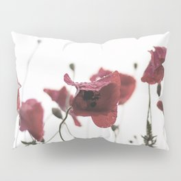 Morning Red Flowers Pillow Sham