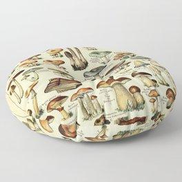 Adolphe Millot- Vintage Mushrooms Illustration Floor Pillow