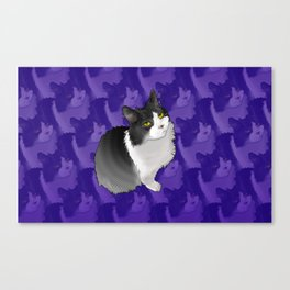 Spider Man the Cat Canvas Print