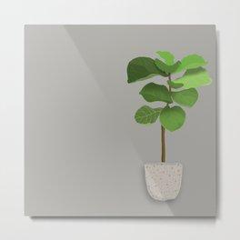 Fiddle Leaf Potted Plant Metal Print