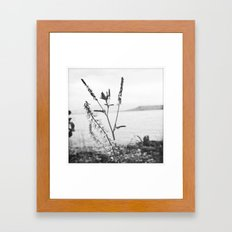 planted by the shore Framed Art Print