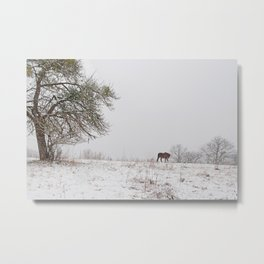 Lonely this christmas Metal Print