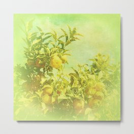Mandarine Tree Metal Print
