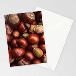 Castanea Chestnuts Nuts pattern Stationery Cards