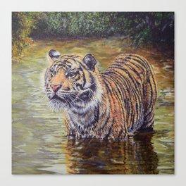 Sumatran Tiger in the Jungle Canvas Print