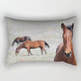 Extremely Photogenic Horse Rectangular Pillow
