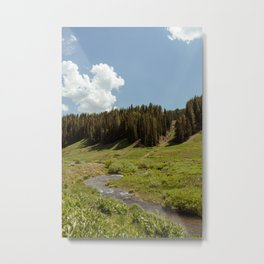 Down to the River Metal Print