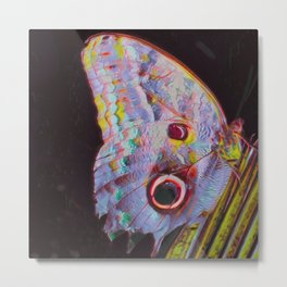 Butterfly IV Metal Print