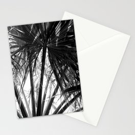Palm Tree Tropical Leaves Silhouette Stationery Cards