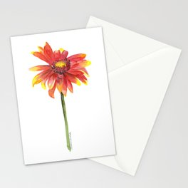Indian Blanket Wildflower Watercolor Stationery Cards