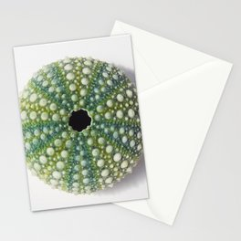 Green Sea urchin shell Stationery Cards