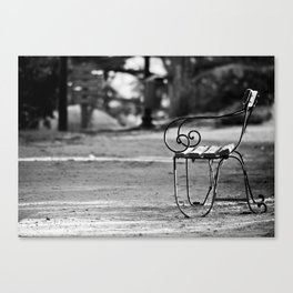 Solitary Park Bench Canvas Print