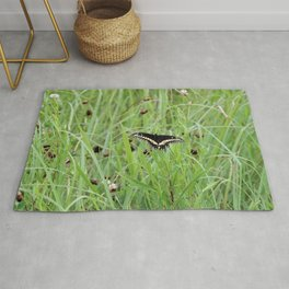 Black Swallowtail Butterfly in the Grass Rug