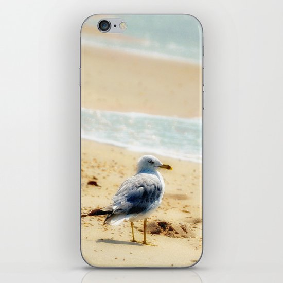 Lonely gull of summer. iPhone & iPod Skin