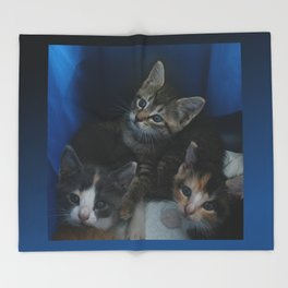 1, 2 & 3 of 8 DPG150830a Throw Blanket
