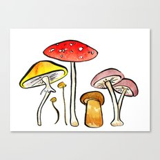 Woodland Mushrooms Canvas Print