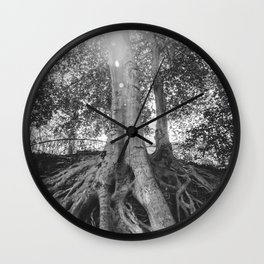 The Root Tree in Greenville, SC Wall Clock