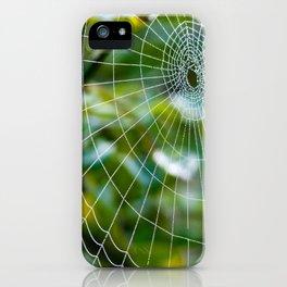 Spider's web iPhone Case
