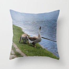 big birds Throw Pillow