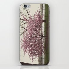 in bloom::nyc iPhone & iPod Skin