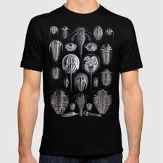Trilobites and Fossils by Ernst Haeckel Black MEDIUM Mens Fitted Tee