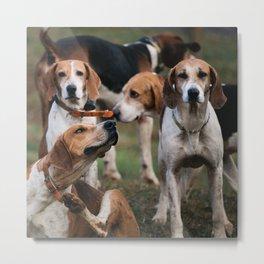 Foxhounds Metal Print