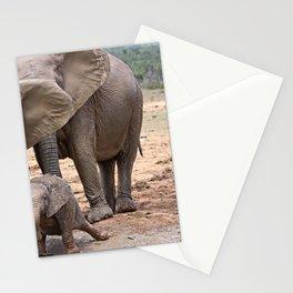Muddy Elephants Stationery Cards