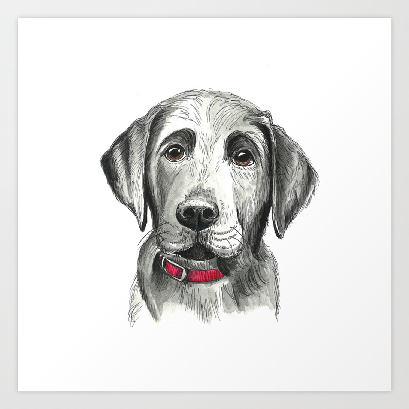 Black Lab Puppy Drawing Art Print By Sarahfusco Society6