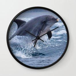 Bottenose dolphin Wall Clock