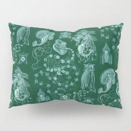 Ernst Haeckel - Siphonophorae Pillow Sham