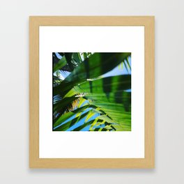 Lunch under the trees  Framed Art Print