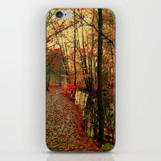 enchants iPhone & iPod Skin