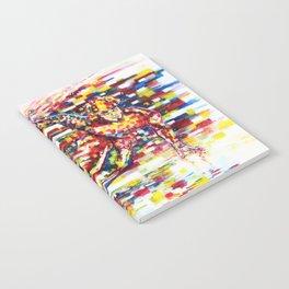 Apolo Anton Ohno - Flow Notebook
