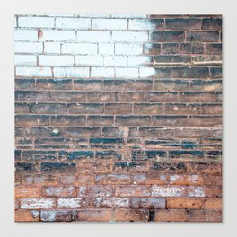 Painted Bricks Canvas Print