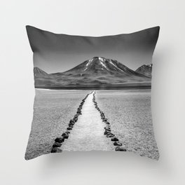 Walk a lonely path B&W Throw Pillow
