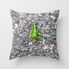 Grashopper Throw Pillow