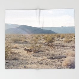 Panamint Valley Coyotes Throw Blanket