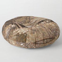 Colorado History Floor Pillow