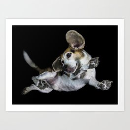 Underdogs Project Beagle Art Print