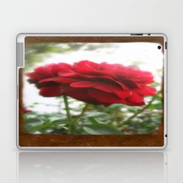 Red Rose with Light 1 Blank P3F0 Laptop & iPad Skin