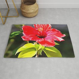 Beautiful Red Tropical Hibiscus Flower Rug