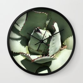 Agave Center Wall Clock