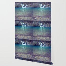 Teal Blue Waterfall Cove Wallpaper