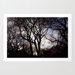 Winters Dawn Art Print
