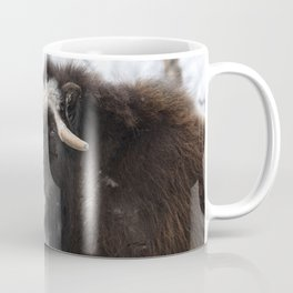 Musk ox portrait Coffee Mug