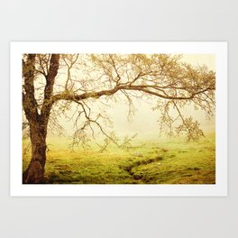 Horseshoe Trail Art Print
